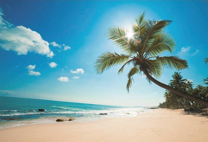 阳光海滩篇     晒太阳,吃海鲜,与椰林树影为伴,在碧海蓝天下尽情
