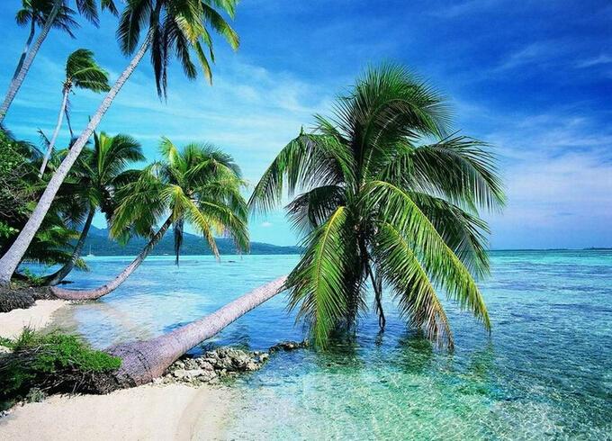 [公告]5月份去海南三亚旅游多少钱 有哪些好玩景点